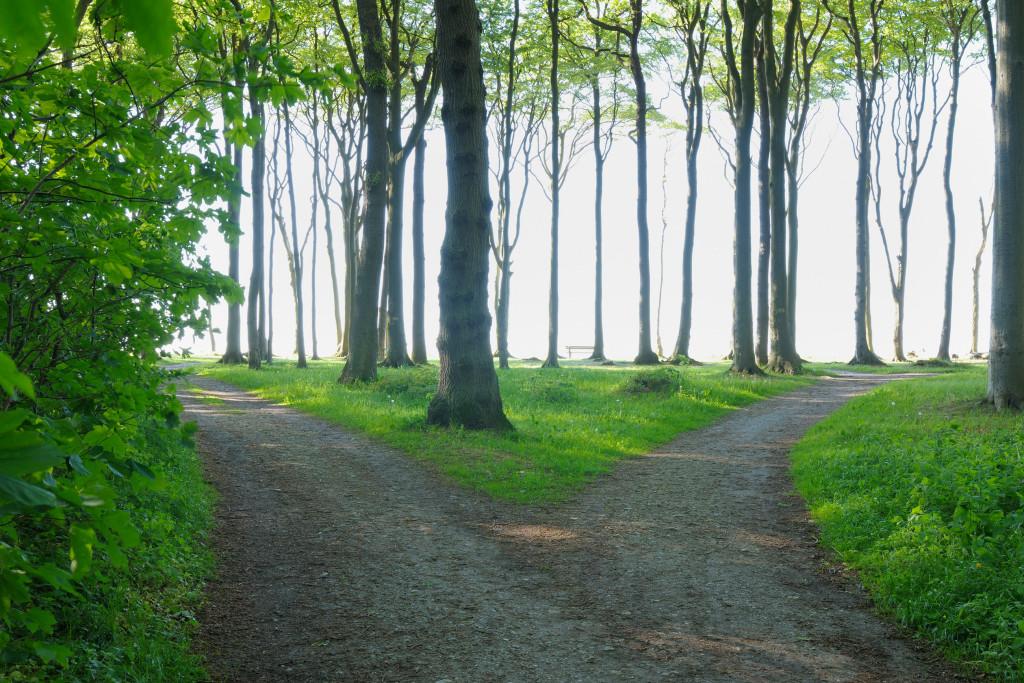 Nienhagen, Bad Doberan, Western Pomerania, Mecklenburg-Vorpommern, Germany --- Image by © Radius Images/Corbis